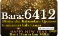 Dhaha ykn Kalaandarii Oromoo fi Simannaa Bara Haaraa Oromoo biratti guyyaa 11 booda.