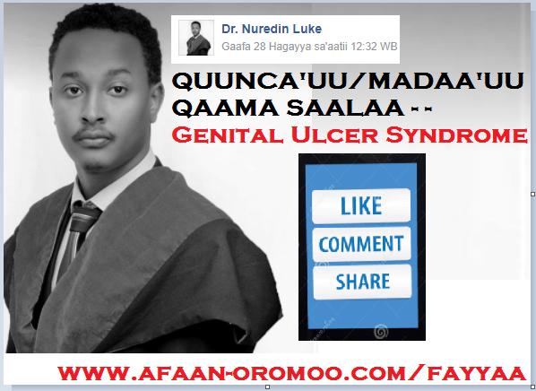 Fayyaa-Health - Afaan Oromo Online   Marsariitii Barnoota