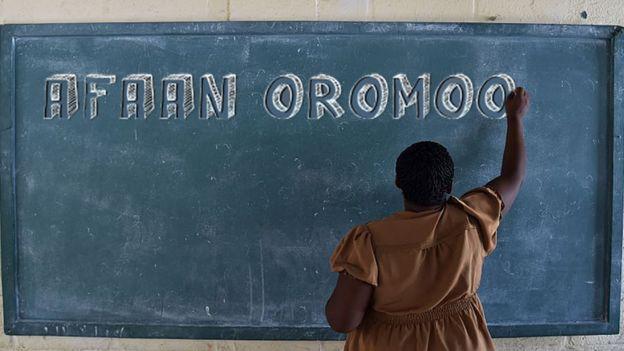 Barnoota - Afaan Oromo Online | Marsariitii Barnoota Afaan