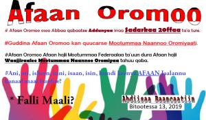 Afoola Oromoo - Afaan Oromo Online | Marsariitii Barnoota
